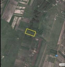 Particular vand teren 30000mp , Bod, Brasov - Anunturi Imobiliare
